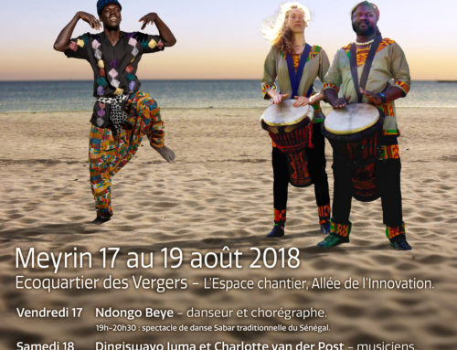 Week end culturel Afrique du Sud et Sénégal